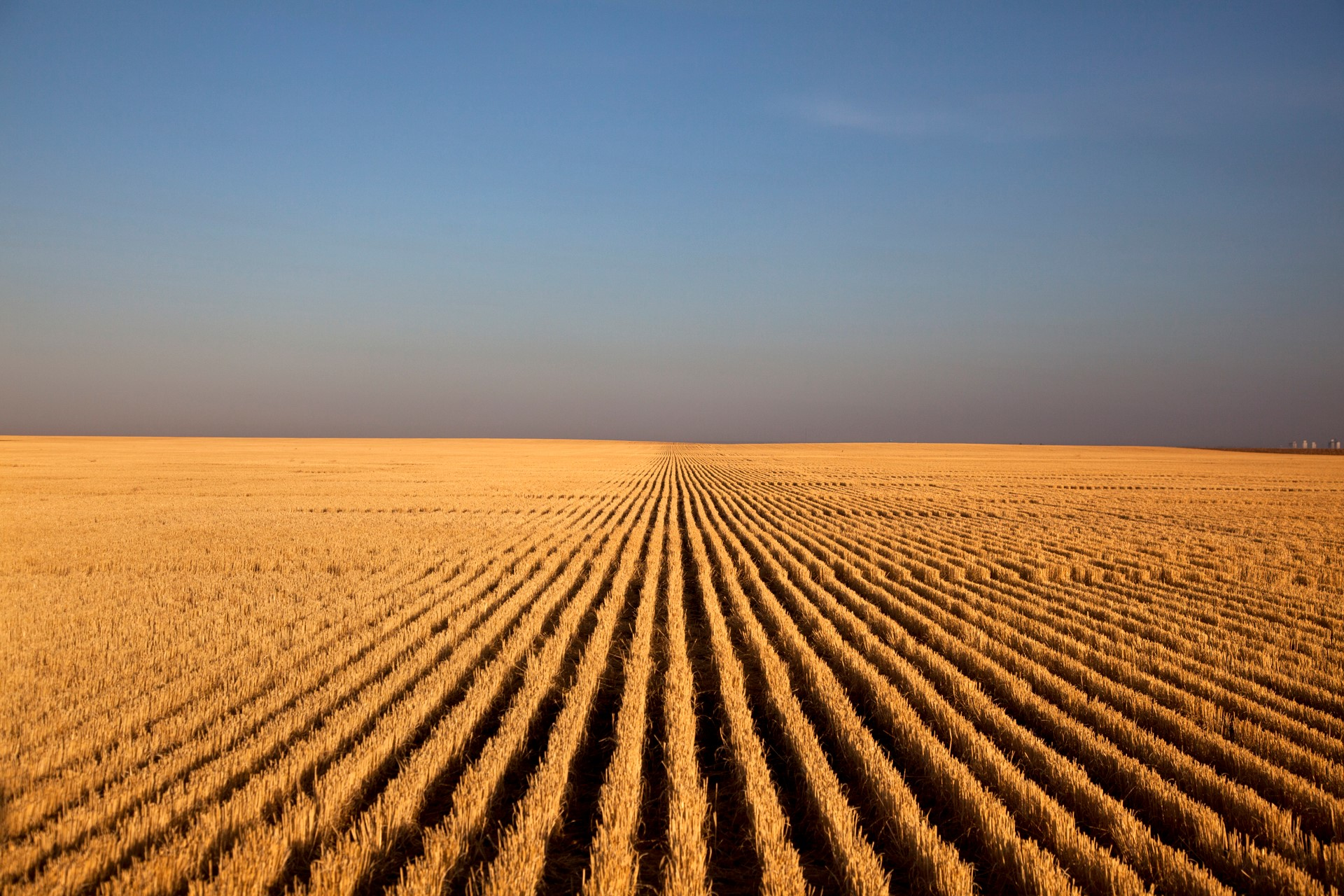 "The Wichita Art Museum is exhibiting ""Kansas Land: Farm Photography by Larry Schwarm and Bryon Darby with University of Kansas Faculty"" through January 2019. The exhibit explores many facets of farming and how it has evolved. Photos include Schwarm's ""Wheat Stubble at Sunrise, Lane County."""